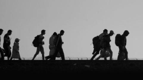 No Fórum de Migrações e Paz, Papa Francisco pede: acolher, proteger, promover e integrar