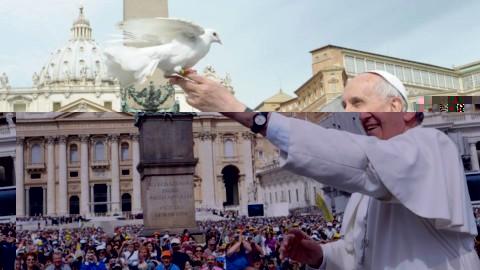 50º Dia Mundial da Paz (1º de janeiro de 2017) – Mensagem do Papa Francisco