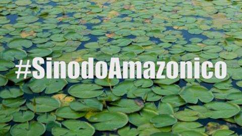 Sínodo para a Amazônia: CNBB lança campanha de sensibilização e informação