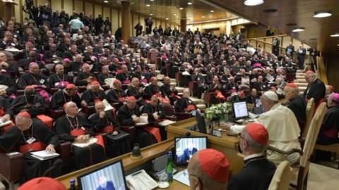 Sexta Congregação (ou sessão): inculturação, encarnação, sinodalidade, narcotráfico, teologia da criação…